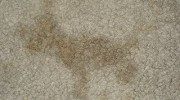 Tips For Reoccurring Carpet Stains