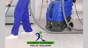 Carpet Cleaner Pro of Waldorf