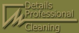 Details Professional Cleaning