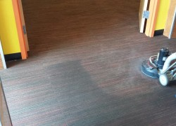 Commercial Carpet Cleaning by D&G Carpet Cleaning